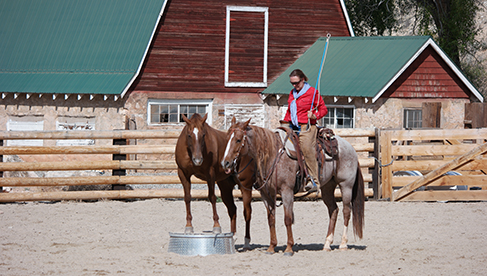 Trapper Creek Ranch Wyoming Horse Riding