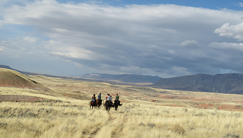 Parelli Natural Horsemanship Wyoming