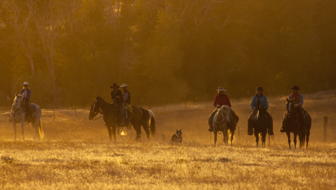 Trapper Creek Ranch Wyoming Equestrian Vacations