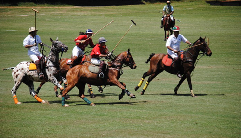 Uganda Polo Safaris Africa riding holidays