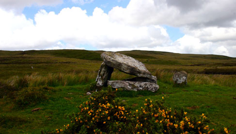 There are many historic sights in the area, including Irish castles, dolmens, Monastic settlements, and Celtic sites.