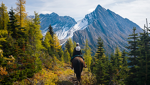 Canadian Rockies horseback holidays