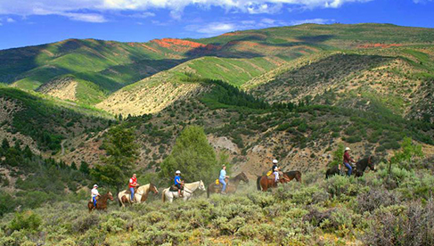 Bearcat Stables Colorado Vail Trail Rides