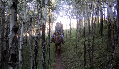 Bearcat Stables Colorado Horseback Riding Adventures
