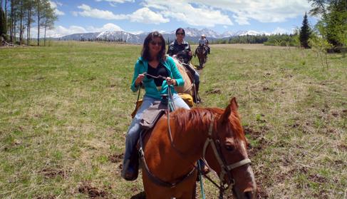 Bearcat Stables Colorado Horse Drawn Sleigh Rides