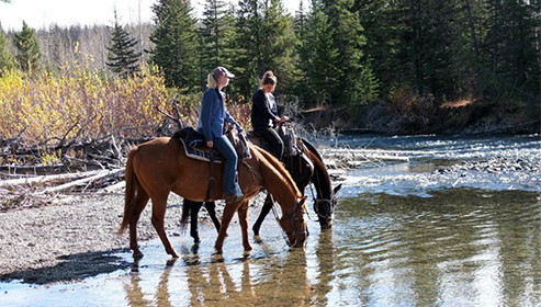 Big Creek Lodge British Columbia Horseback Riding Vacations