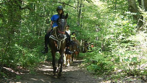 Black River Farm and Ranch Michigan Horseback Holidays and Camps
