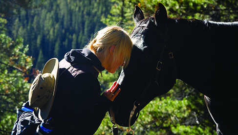 Banff National Park Alberta horseback riding travels