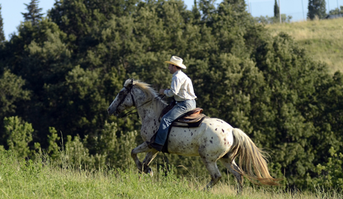 Castellare di Tonda Horseback Riding Vacations in Tuscany
