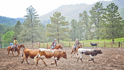 Cherokee Park Ranch Colorado Guest Ranch Holidays