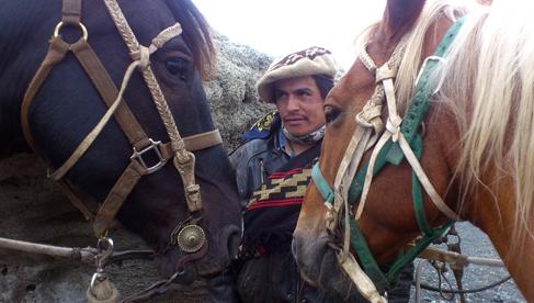 Chile Torres del Paine National Park Horseback Riding Tours
