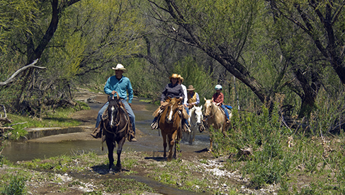 Circle Z Horseback Riding Vacations Arizona