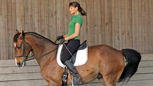 Classical Dressage Riding Vacation Virginia