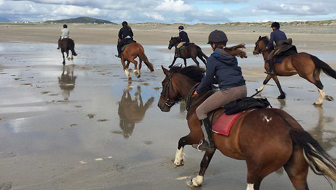 Clew Bay Trail Ride Ireland Horseback Vacations Wild Atlantic Way