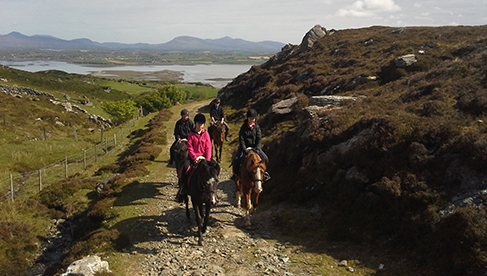 Clew Bay Trail Ride Ireland Equestrian Holidays