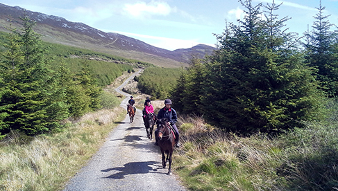 Clew Bay Trail Ride Ireland Equestrian Vacations