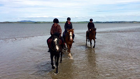 Clew Bay Trail Ride Ireland Horseback Riding Holidays