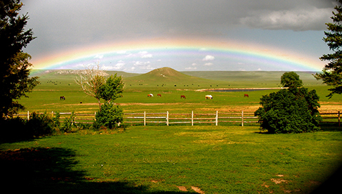 Colorado Horse Ranch Vacations