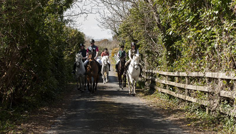 Connemara Equestrian Escapes equestrian vacations