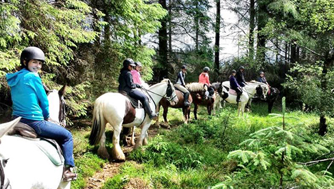Coolmine Equestrian Camps in Ireland