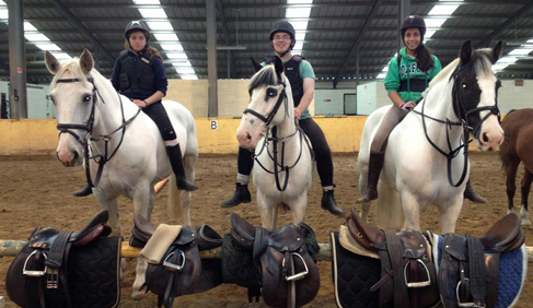 Coolmine Equestrian Academy Dublin Ireland horse riding holidays