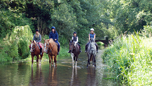 Crossogue Horseback Riding Camps for Girls