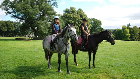 Crossogue Ireland Horse Camps