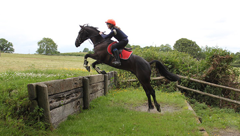 Crossogue Equestrian Camps in Ireland