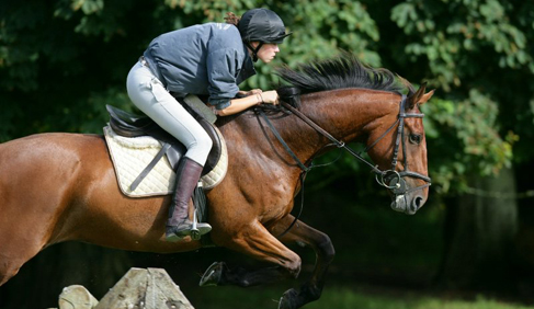 Crossogue Equestrian Centre- Ireland Equestrian Vacations