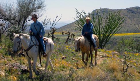 Elkhorn Ranch-Arizona dude ranch vacations