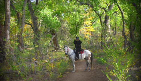 Enchantment Equitreks New Mexico Horse Holidays