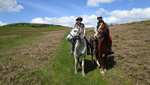 FreeRein Trail Riding Holidays in Wales