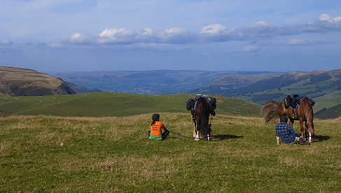 FreeRein Horseback Riding Holidays in Wales