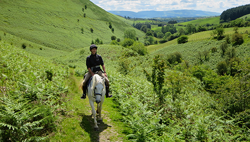 Wales Equestrian Vacations Equitrekking