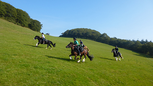 FreeRein Equestrian Vacations in United Kingdom