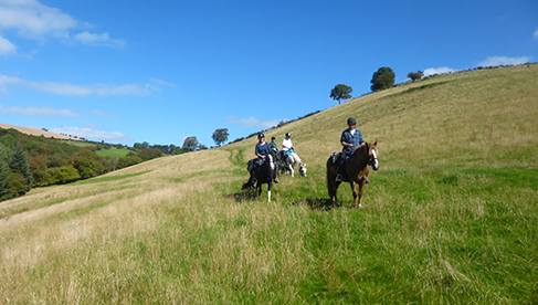 FreeRein Equestrian Vacations in Wales