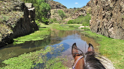 Geronimo Trail Guest Ranch in New Mexico