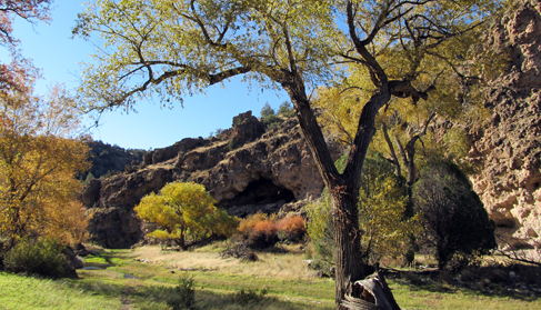 Fall colors at Geronimo Trail Guest Ranch, New Mexico.