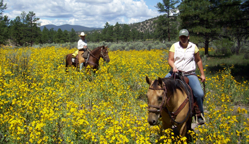 Hoyt Meadow at Geronimo Trail Guest Ranch, New Mexico.