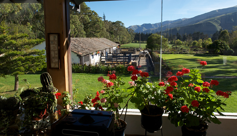 View of the horse riding stables. Photo by Pablo Corral.