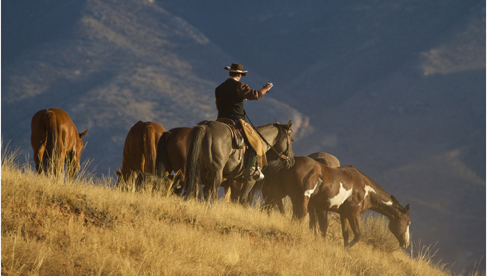 The Hideout Lodge & Guest Ranch- Wyoming Dude Ranch