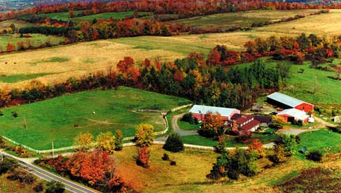 The Hill Top Ranch- New York Dude Ranch