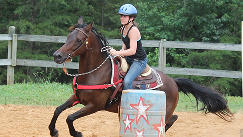 Valley View Ranch Equestrian Camp Georgia Horse Camps for Girls