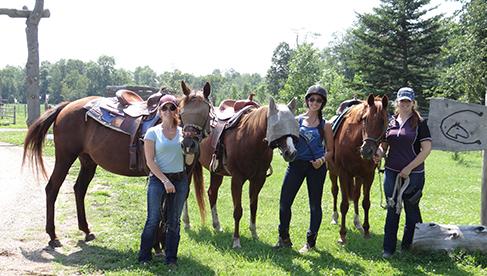 Horse Country Campground Ottawa Ontario