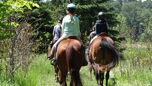 Horse Country Campground Ottawa equestrian vacations Canada