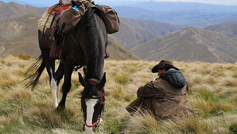 The mountains Musters Mountain Pack Trail with Adventure Horse Trekking New Zealand