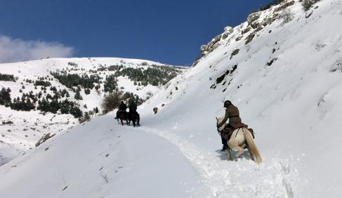 Italy horse vacations sicily