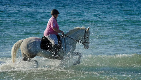 Connemara Equestrian Vacations