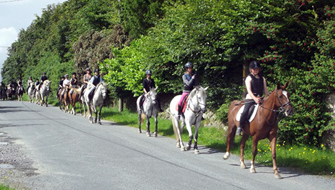 Oakwood Stables Ireland Adult Childrens Riding Vacations