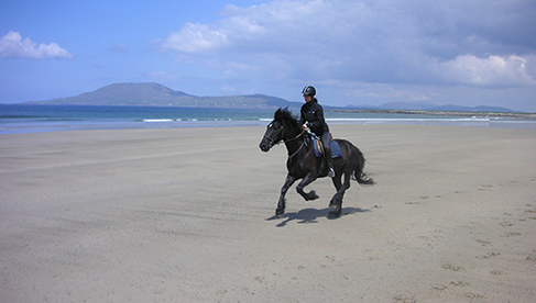 Ireland Riding Holidays Clew Bay Trails